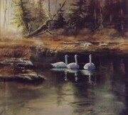3 Graces - Marshall Stevenson Wildlife Refuge  watercolour 17.5 X 18.5              framed SOLD